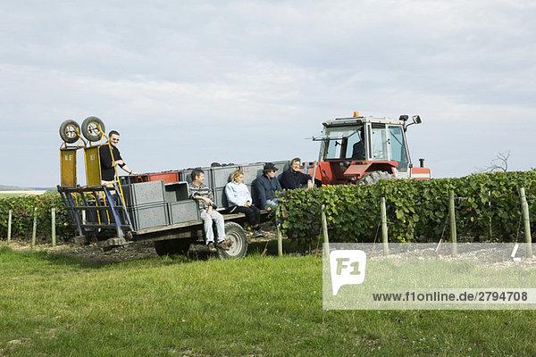Frankreich  Champagne-Ardenne  Aube  Arbeiter  die auf einem Traktor gezogenen Anhänger im Weinberg ruhen.