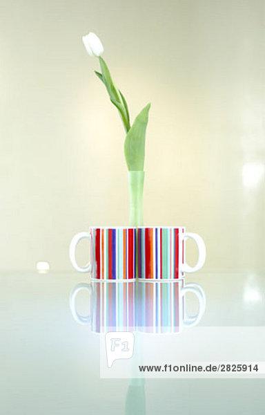 Stillleben mit zwei bunte Tassen und einer Tulpe