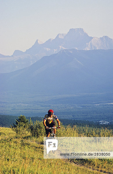 Mountain biker riding along Benchlands Trail  Canmore  Alberta  Canada.