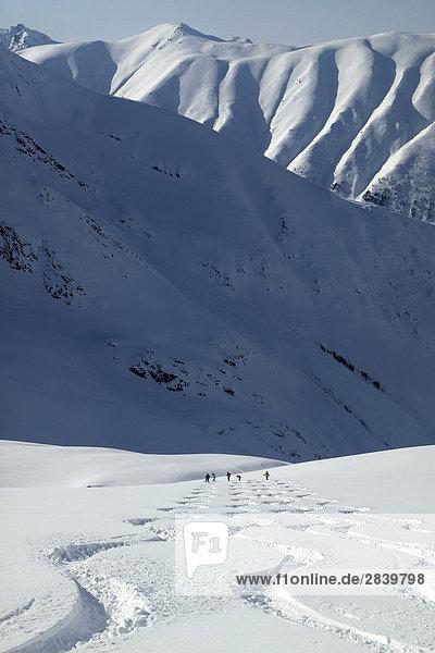 Skeena Gebirge  British Columbia  Kanada.