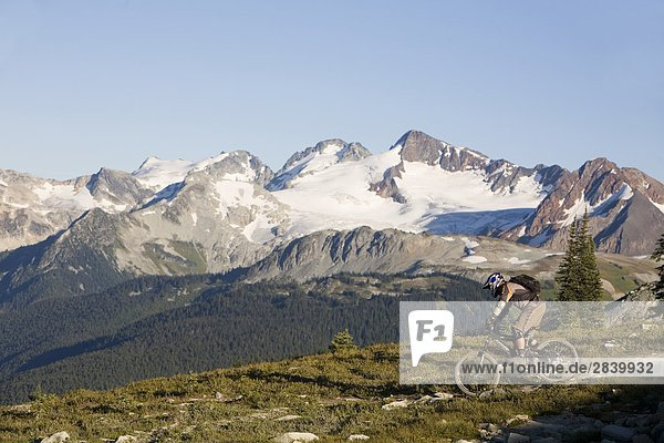 Mountainbiken in der Coast Mountains in Whistler  British Columbia  Kanada.