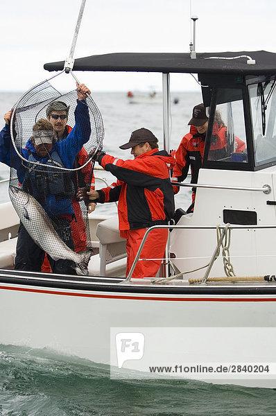 Sport Lodge Landhaus Insel angeln British Columbia Kanada Queen Charlotte Islands