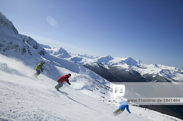 Ski Berge Whistler Backcountry  British Columbia  Kanada.