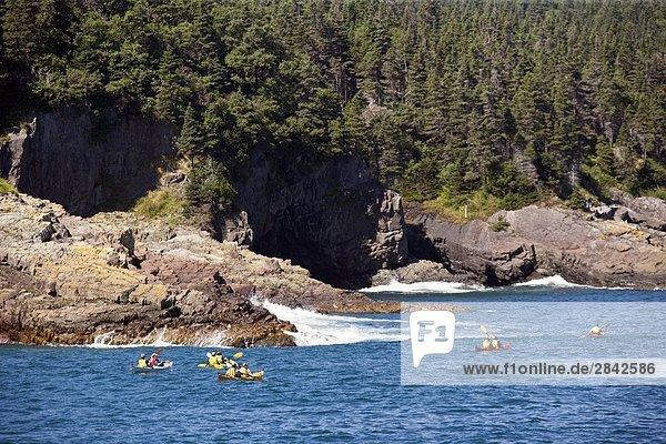 Mensch Menschen Küste Kajak Neufundland Kanada