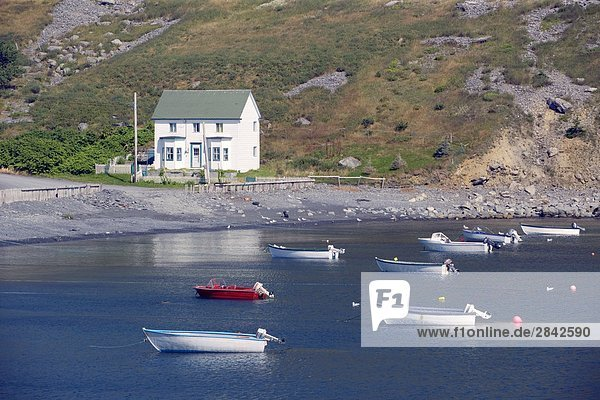 Freshwater  Newfoundland  Canada