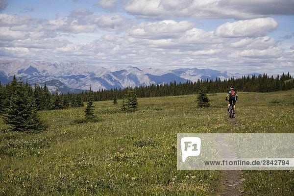 Eine junge Frau Biken landschaftlich Jumping Pfund Ridge  Kananaskis Country  Rocky Mountains  Alberta  Kanada.