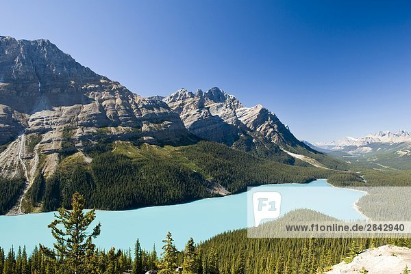 Peyto Lake  Banff-Nationalpark  Alberta  Kanada.