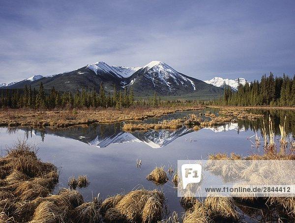 The Sundance Range and the Third Vermilion Lake  Banff National Park  Alberta  Canada