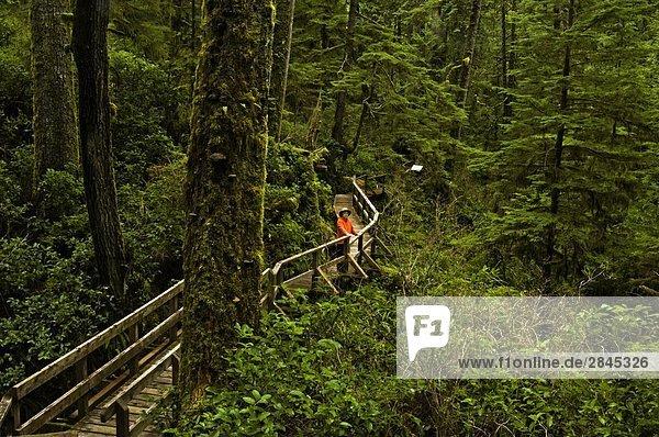 Besucher Boardwalk in Pacific Rim National Park  Vancouver Island  British Columbia  Kanada