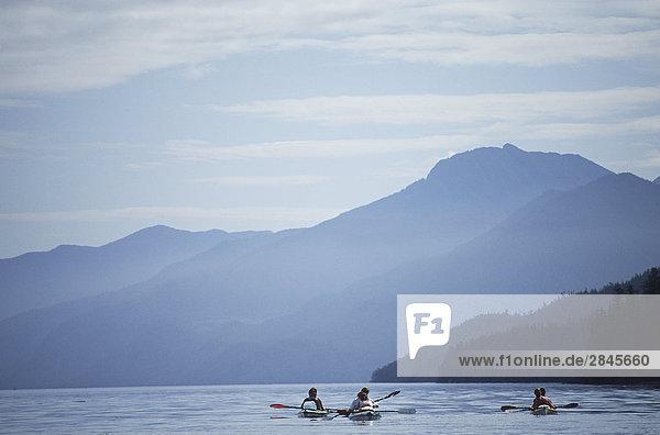 Johnstone Strait British Columbia Kanada Vancouver Island