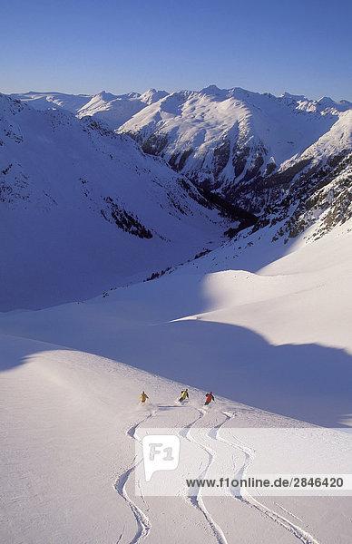 Skifahrer in Whistler Hinterland  Küstengebirge  British Columbia  Kanada.