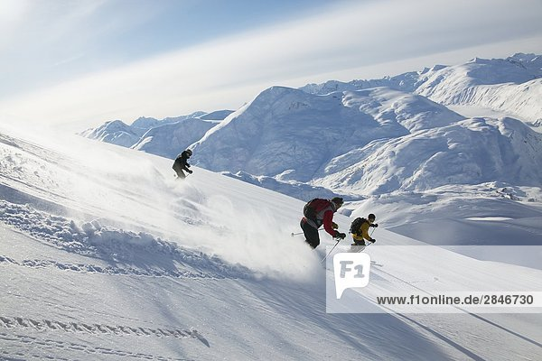 Skifahren der Coast Mountains,  British Columbia,  Kanada.