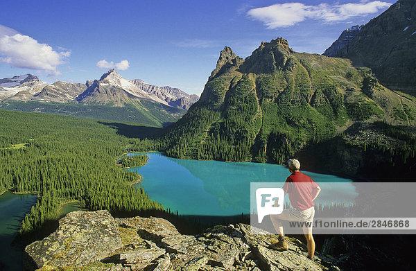 Wanderer  See O'Hara  Yoho Nationalpark  British Columbia  Kanada.