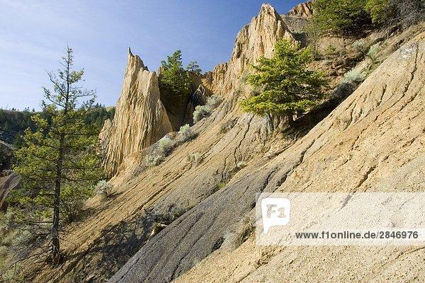 Churn Creek Bereich  British Columbia  Kanada.