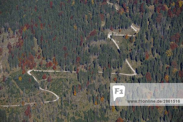 Österreich  Karwendel  Vorderskopf  Rissbachtal  Waldgebiet mit Serpentinen