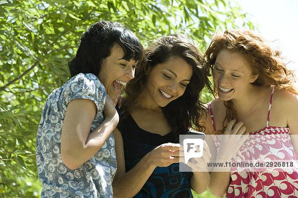 Drei junge Frauen im Freien  die gemeinsam auf das Smartphone schauen