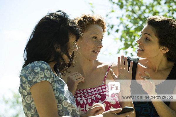 Junge Frauen beim Plaudern im Freien  eine hält ein Handy.