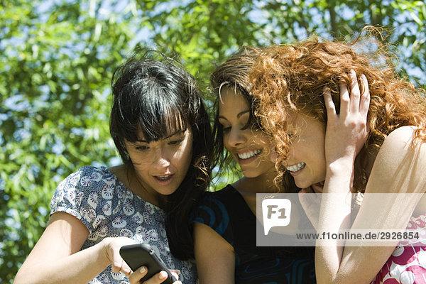 Drei junge Frauen  die das Handy im Freien anschauen