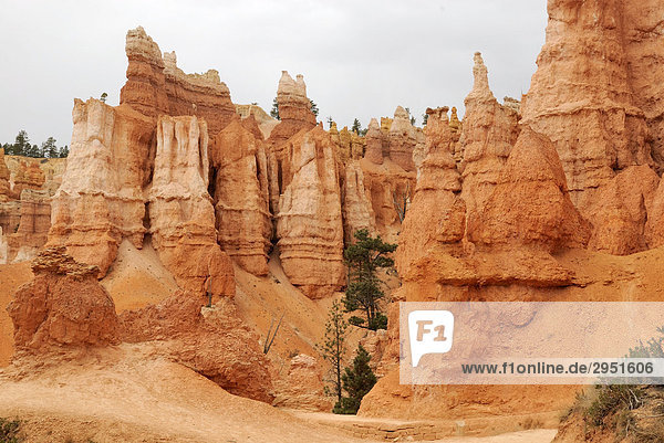 Kalksteinskulpturen  sog. Hoodoos  Bryce Canyon Nationalpark  Utah  USA