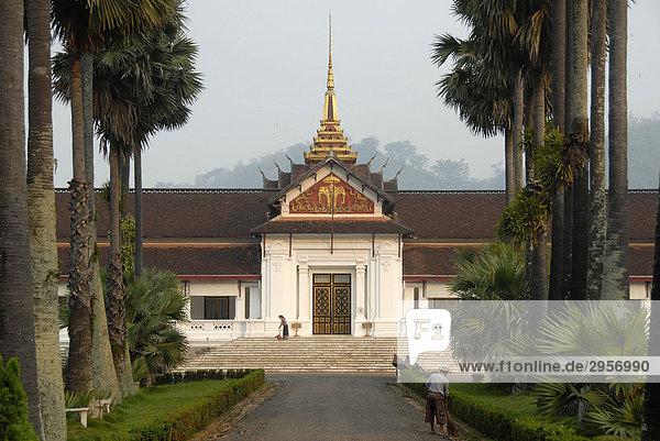 Eingang mit Allee aus Palmen  Königspalast Museum  Luang Prabang  Laos  Südostasien