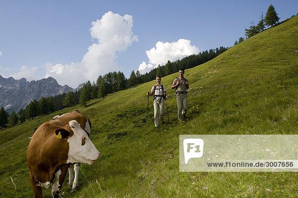 10853596  Walking  Wandern  Ramsau  Dachstein  Styr