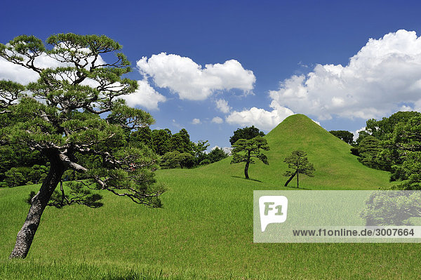 10853650  Mt Fuji Darstellung  Suizenji Jojuen