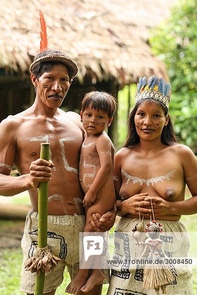 10857650  Pevas  Peru  Amazonas-Regenwald  Amazonien