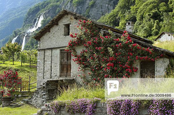 Borgonuovo near Chiavenna north of Lago Maggiore Lombardy Italy little hut at the waterfall Acqua Fraggia