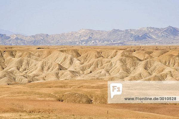 Namib-Naukluft-Nationalpark  Namibia  Afrika