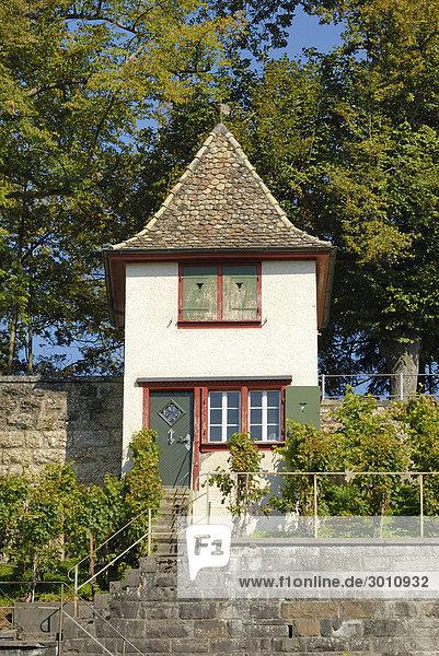 Rapperswil - Rebhäuschen am Schloßberg - Kanton Sankt Gallen  Schweiz  Europa.