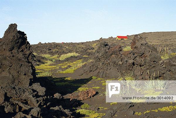 Lava Feld Island