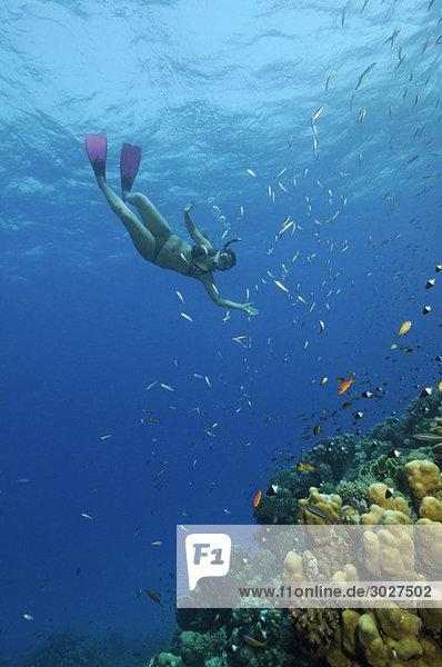 Ägypten  Rotes Meer  Hamata  Frau beim Schnorcheln am Korallenriff