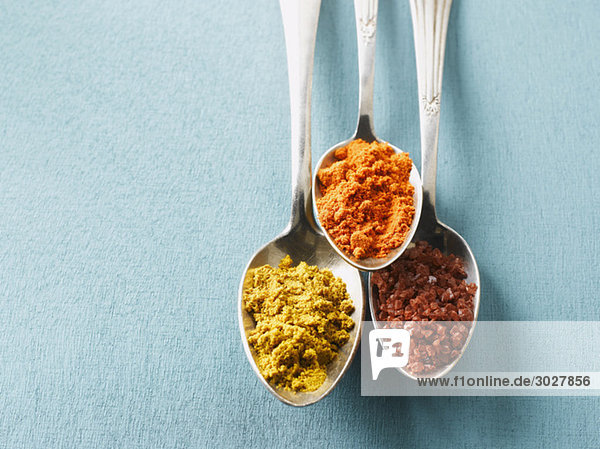 Cayennepfeffer  Currypulver und Steinsalz auf Löffeln  erhöhte Ansicht