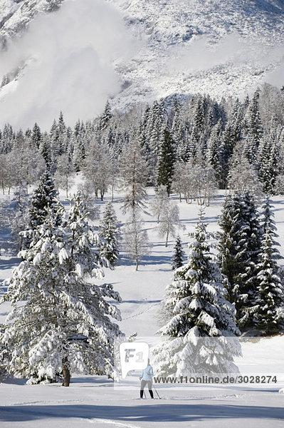 Austria  Tyrol  Seefeld  Wildmoosalm  Woman cross country skiing