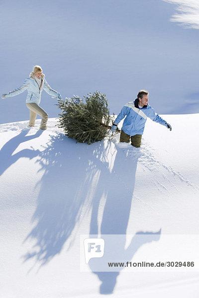 Italien  Südtirol  Seiseralm  Paar mit Weihnachtsbaum im Schnee