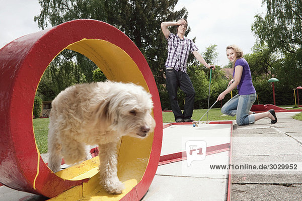 Germany  Bavaria  Ammersee  Young couple playing mini golf  dog in foreground
