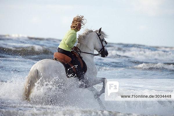 Frau reitet auf Andalusier im Wasser