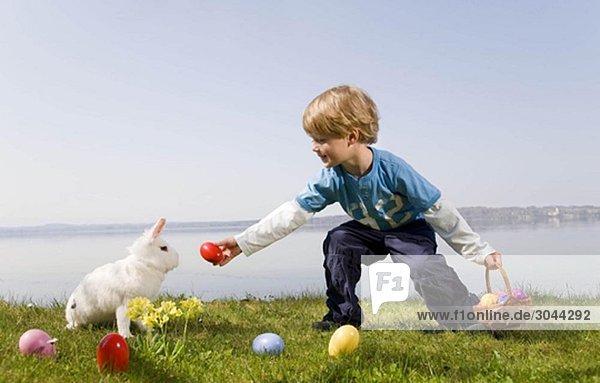Junge  Hase findet Ostereier