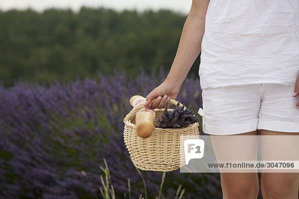 Frankreich  Provence. Frau in Lavendelfeld