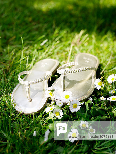 Flip Flops in das Gras Schweden.