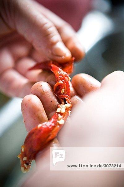 Peeling red pepper close-up Sweden.