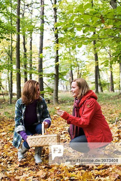 Mother and daughter picking mushrooms Sweden.