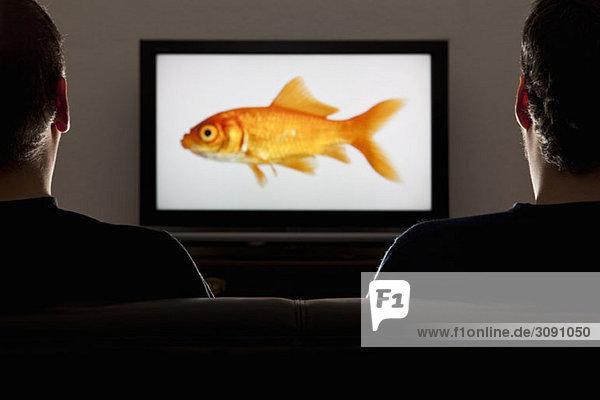 Zwei Männer beim Fernsehen  Rückansicht