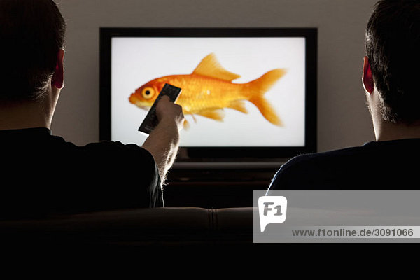 Two men watching television with one using a remote control