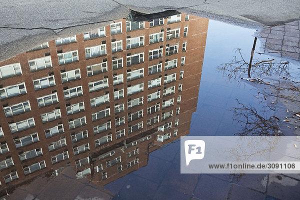 Pfütze mit Spiegelung eines Gebäudes