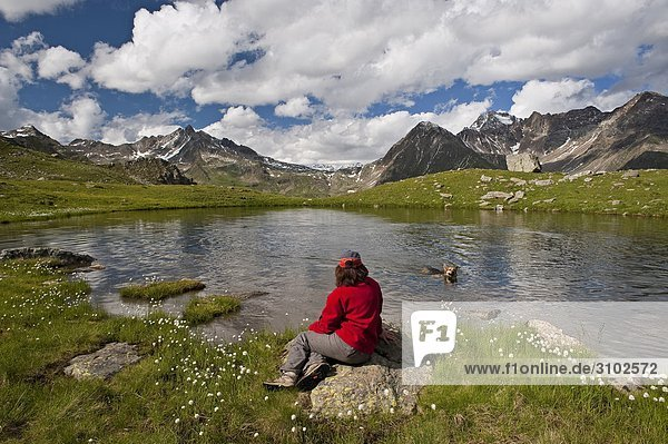 Italy  Lombardy  National Park of Stelvio  Monticelli lake  on the background the Gavia Pass