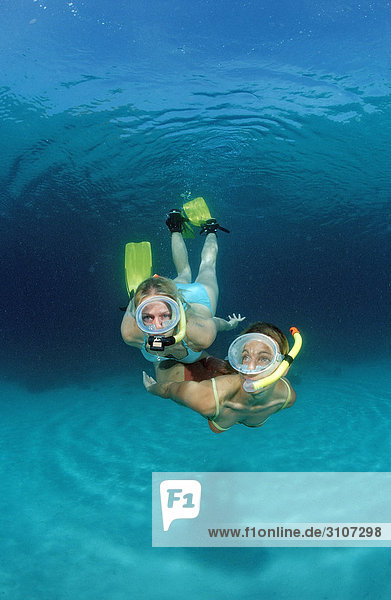 Two young woman snorkeling  Bali  Indian Ocean  underwater shot