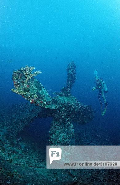 Scuba diver and propellor of shipwreck Umbria  Wingate Reef  Sudan  Red Sea