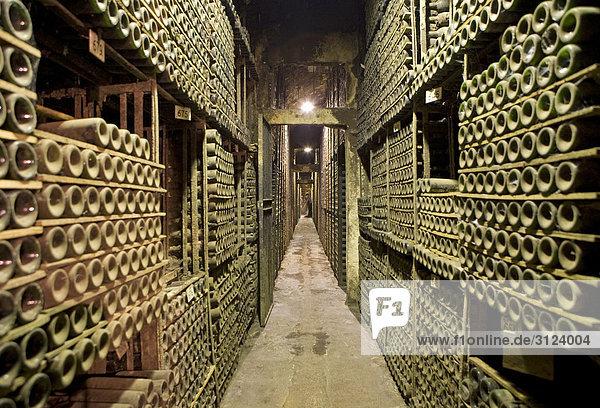Weinfässer in einem Weinkeller  Elciego  Spanien Weinfässer in einem Weinkeller, Elciego, Spanien