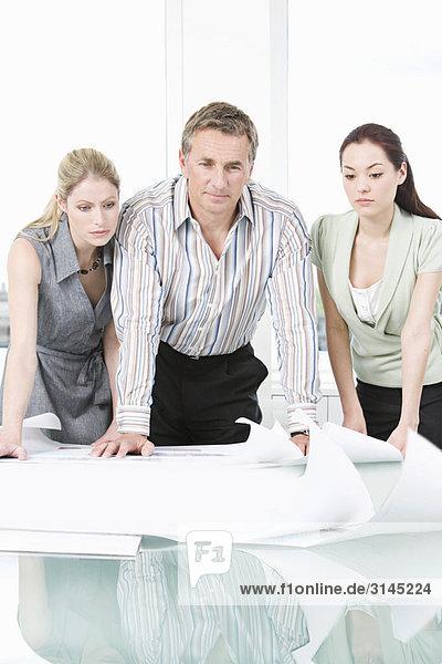 Drei Kollegen schauen sich einige Pläne an